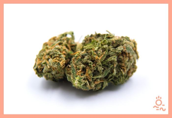 Man, 49, arrested for transporting weed to Wa