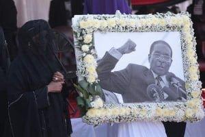 Mugabe's family to 'inherit Zanu-PF properties'