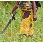 Ghanaian Woman Clubs Husband's Head With Machete